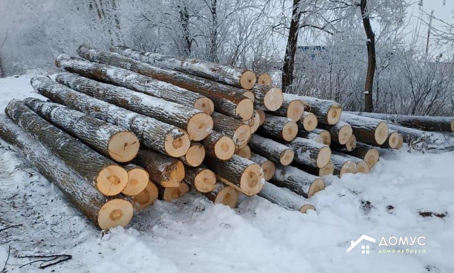 Брус из зимнего и летнего леса: особенности и отличия